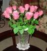 Stacy's Roses, Honda Body, Acrylic Paint, Rose size